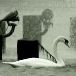 1091283_fountain